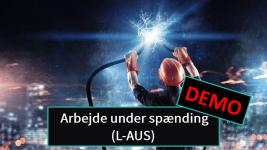 L-AUS DEMO
